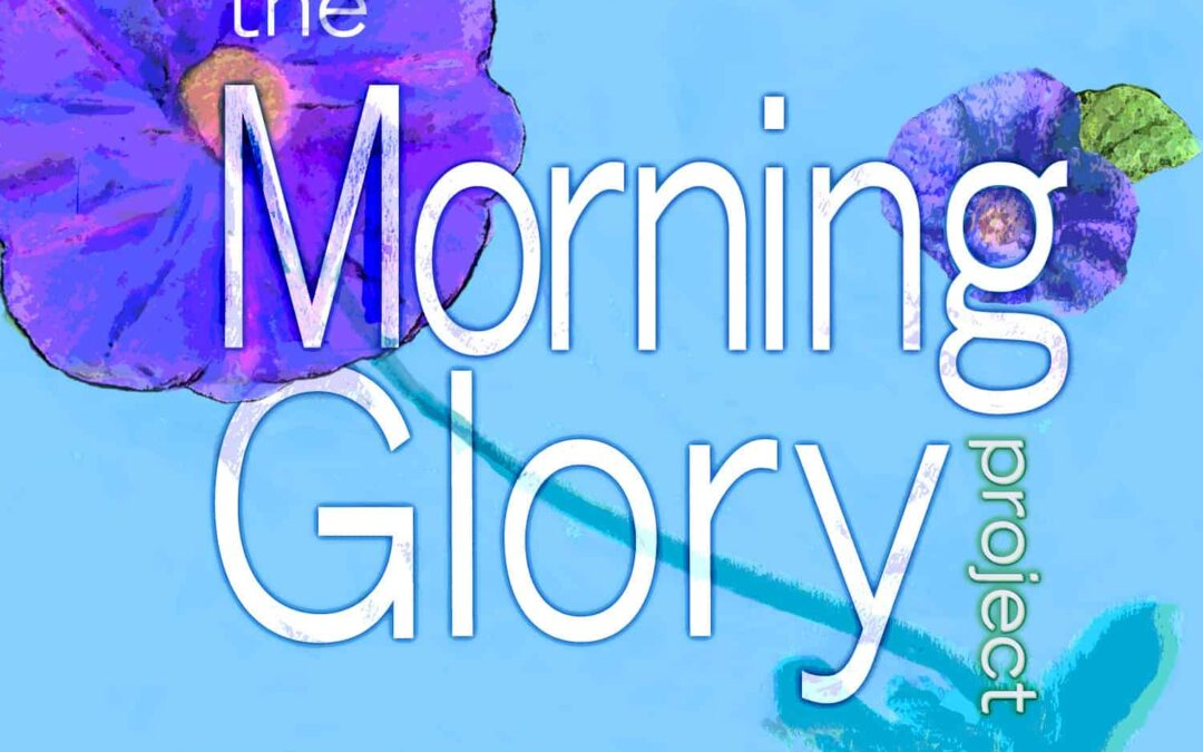 Morning Glory Project